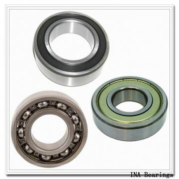 INA RASE1 INA Bearings